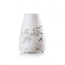 Humidifier and diffuser OCELIA